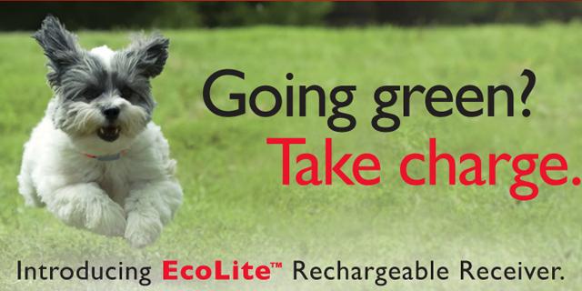EcoLite Receiver